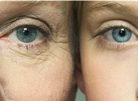Menopausia ciclo vital
