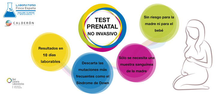 Test prenatal no invasivo