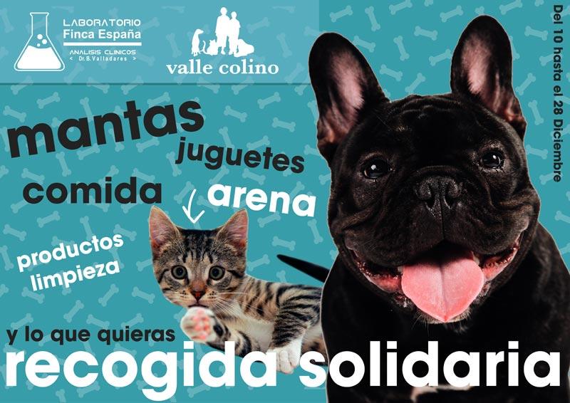 Recogida solidaria Valle Colino